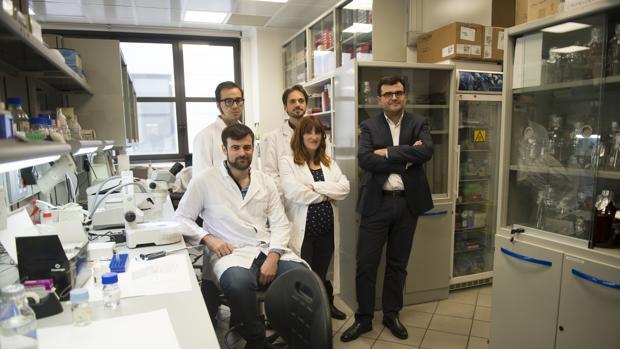 Grupo de científicos españoles que han realizado este estudio pionero