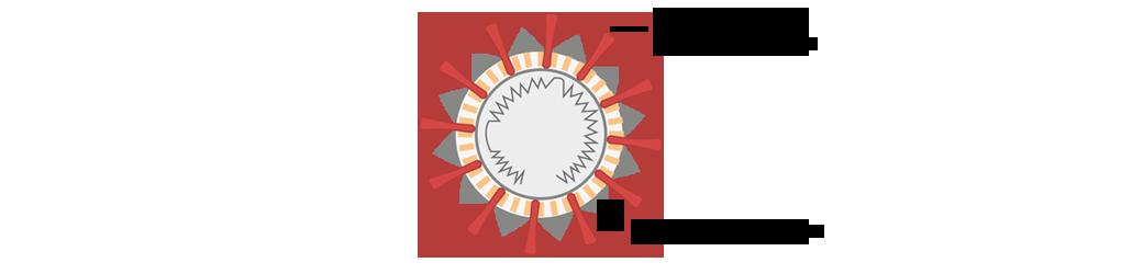 virus y sus células