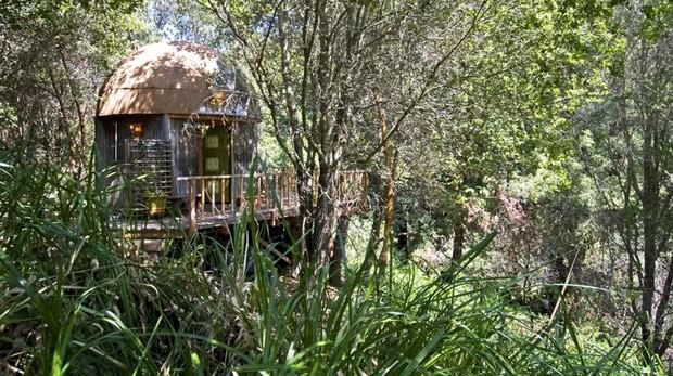Mushroom Dome en Aptos, California, el alojamiento de Airbnb con más visitantes